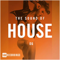 Serious-Man - Going on (Jean-Jérôme remix) on The Sound Of House, Vol. 06 [LW Recordings]